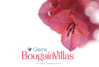 Gems - Bougainvillas