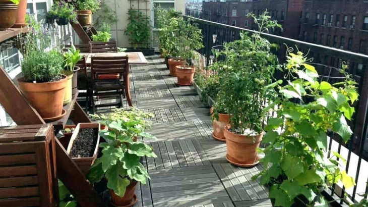 How to Create an Awesome Balcony Garden in Your Apartment