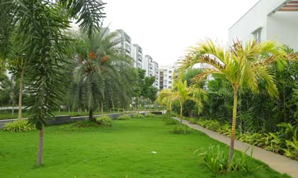 Apartments in Hyderbad