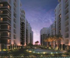DTC Southern Heights night view